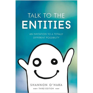 Talk to The Entities Book