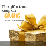 gift ideas christmas birthdays