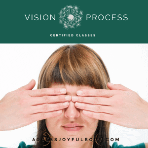 I offer correcting Vision Process