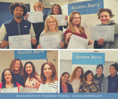 participants at the access bars training